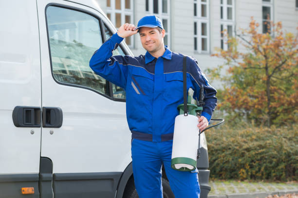 Elements to Consider When Choosing a Pest Management Company